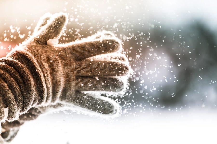 Frostschäden vermeiden